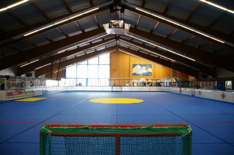 Inline Hockey Halle mit Sport MULTISPORT
